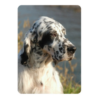 english setter 2.png 5x7 paper invitation card