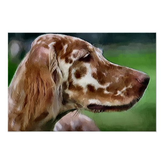 English Setter Art Prints