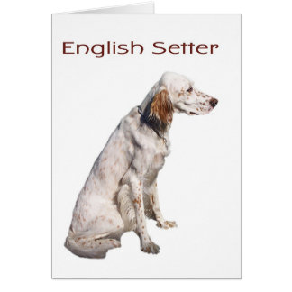 English Setter Greeting Card