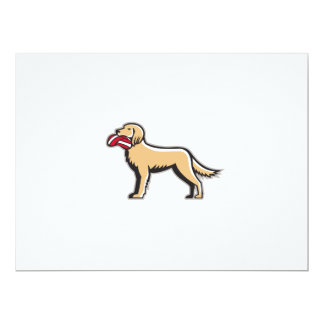 English Setter Dog Deflated Volleyball Circle Retr 17 Cm X 22 Cm Invitation Card