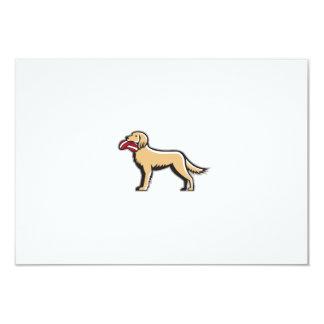 English Setter Dog Deflated Volleyball Circle Retr 9 Cm X 13 Cm Invitation Card