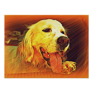 English Setter Hunting Dog Poster