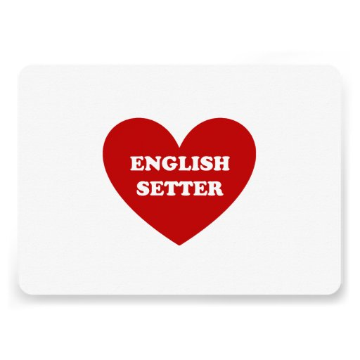 English Setter Personalized Announcements