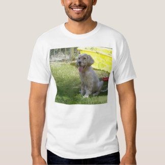english setter orange_belton_puppy.png t-shirts