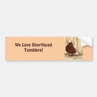 English Shortfaced Bald Pigeon Bumper Sticker