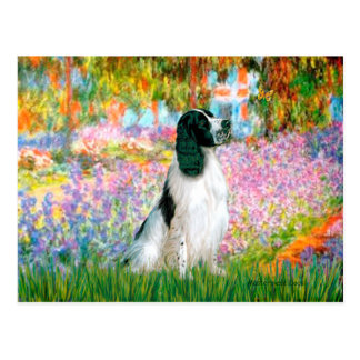 English Springer 7 - Garden Postcard