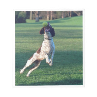 english springer catching ball.png notepad