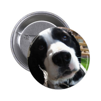 English Springer Spaniel 6 Cm Round Badge