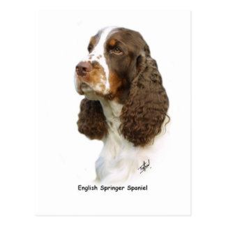 English Springer Spaniel 8M15D-05 Postcard