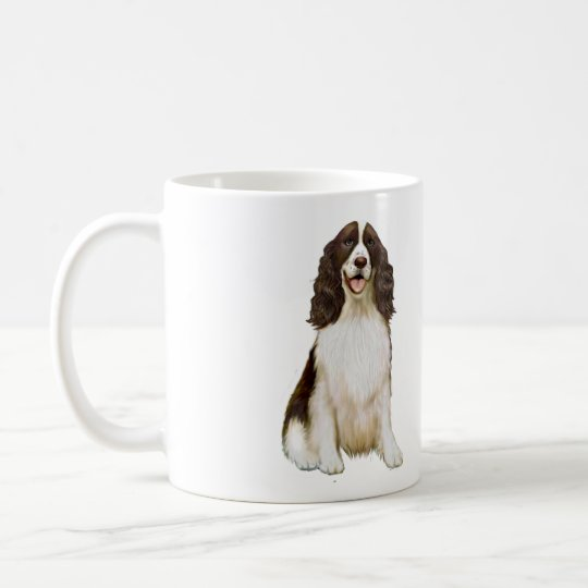 English Springer Spaniel (B) - Liver and White