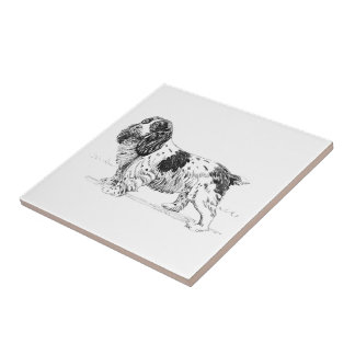 English Springer Spaniel Bird Dog Breed Drawing Small Square Tile