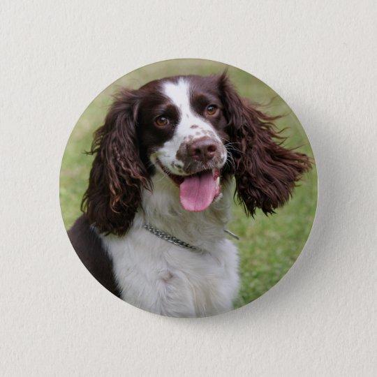 English Springer Spaniel dog beautiful photo, gift 6 Cm Round Badge