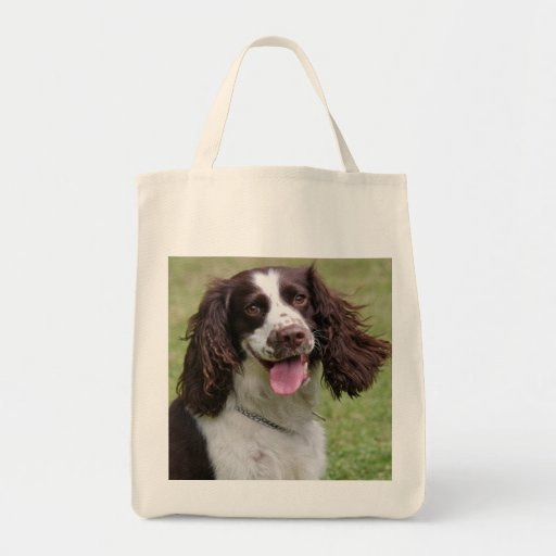 English Springer Spaniel dog beautiful photo, gift Canvas Bags
