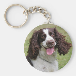 English Springer Spaniel dog beautiful photo, gift Basic Round Button Key Ring