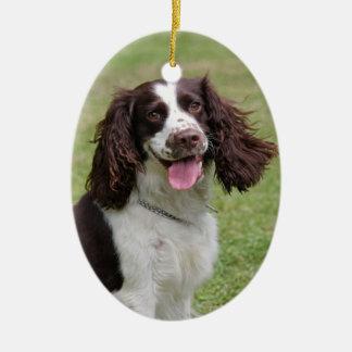 English Springer Spaniel dog beautiful photo, gift Ceramic Oval Decoration