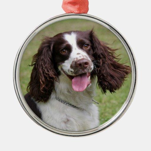 English Springer Spaniel dog beautiful photo, gift Ornaments