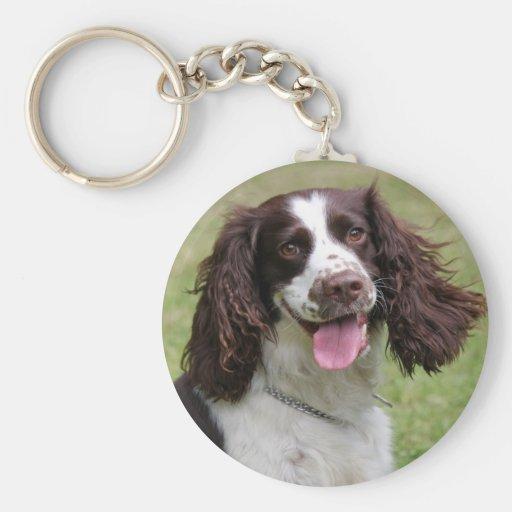 English Springer Spaniel dog beautiful photo, gift Keychains