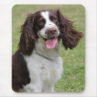 English Springer Spaniel dog beautiful photo, gift Mouse Pad