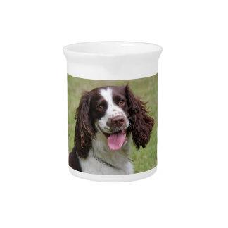 English Springer Spaniel dog beautiful photo gift Beverage Pitchers