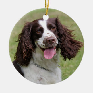 English Springer Spaniel dog beautiful photo, gift Round Ceramic Decoration