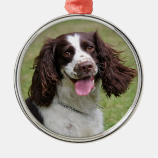 English Springer Spaniel dog beautiful photo, gift Silver-Colored Round Decoration