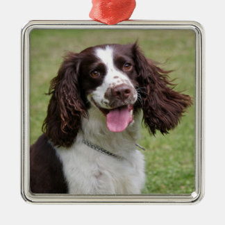 English Springer Spaniel dog beautiful photo, gift Silver-Colored Square Decoration