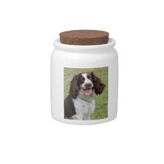 English Springer Spaniel dog beautiful photo, gift Candy Jars