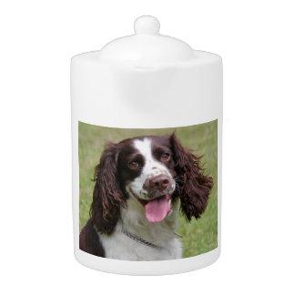 English Springer Spaniel dog beautiful photo, gift