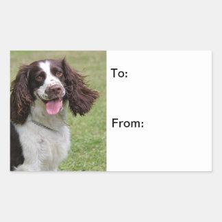 English Springer Spaniel dog beautiful photo Rectangle Stickers