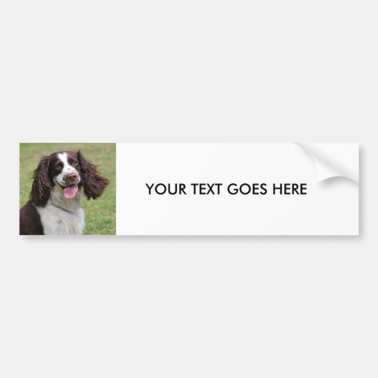 English Springer Spaniel dog custom bumper sticker