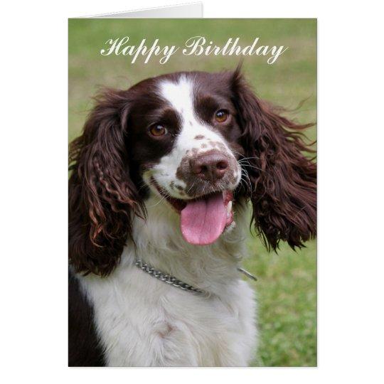 English Springer Spaniel dog happy birthday card