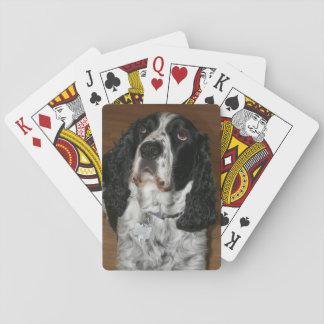 English Springer Spaniel Dog Photo Poker Deck