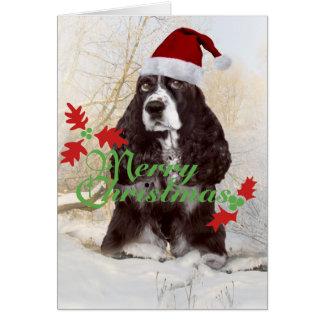 English Springer Spaniel Merry Christmas Cards