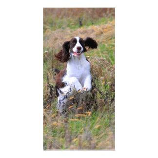 English Springer Spaniel Personalised Photo Card