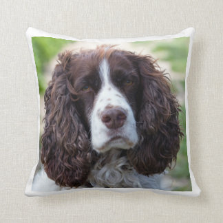 english springer spaniel.png cushion
