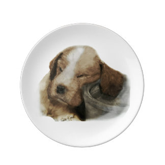 English Springer Spaniel Porcelain Plate