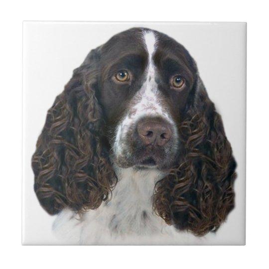 English springer spaniel Portrait Tiles
