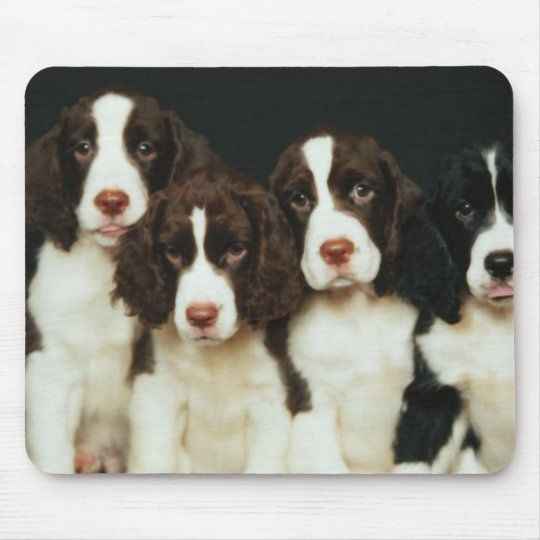 English Springer Spaniel Puppies (2) Mouse Mat