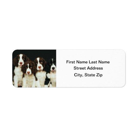 English Springer Spaniel Puppies (2) Return Address Label