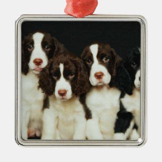 English Springer Spaniel Puppies (2) Silver-Colored Square Decoration