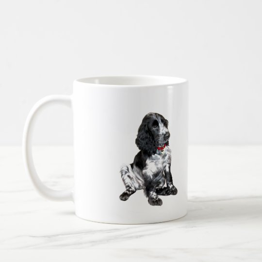 English Springer Spaniel Puppy - black and white