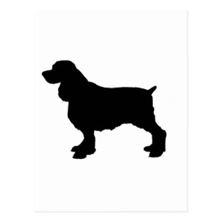 English Springer Spaniel Silhoutee, Freehand Drawn Postcard