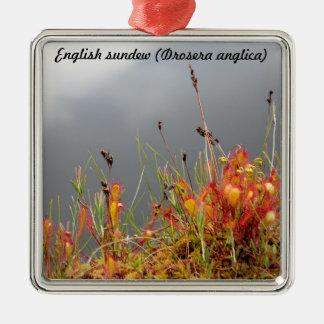 English Sundew Christmas Ornament