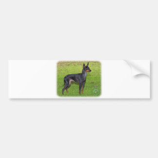 English Toy Terrier 9R087D-17 Bumper Sticker