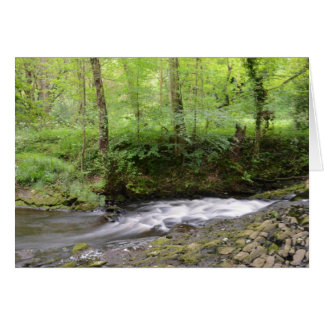 English Woodland Stream Card