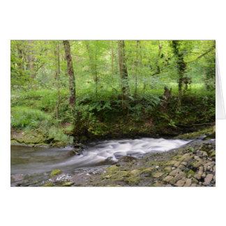 English Woodland Stream Greeting Card