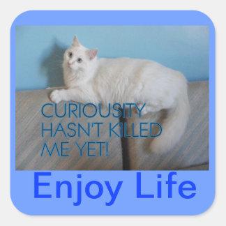 Enjoy Life stickers
