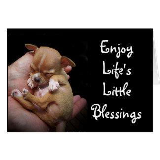 Enjoy Life's Little Blessings Card