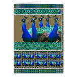 Enjoy:  PEaCOCK n Feathers Art Graphics