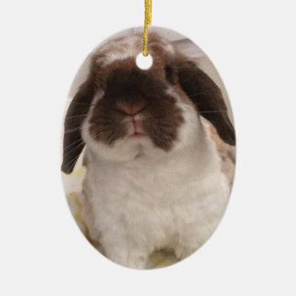 Enjoy some furriness on your tree christmas ornament